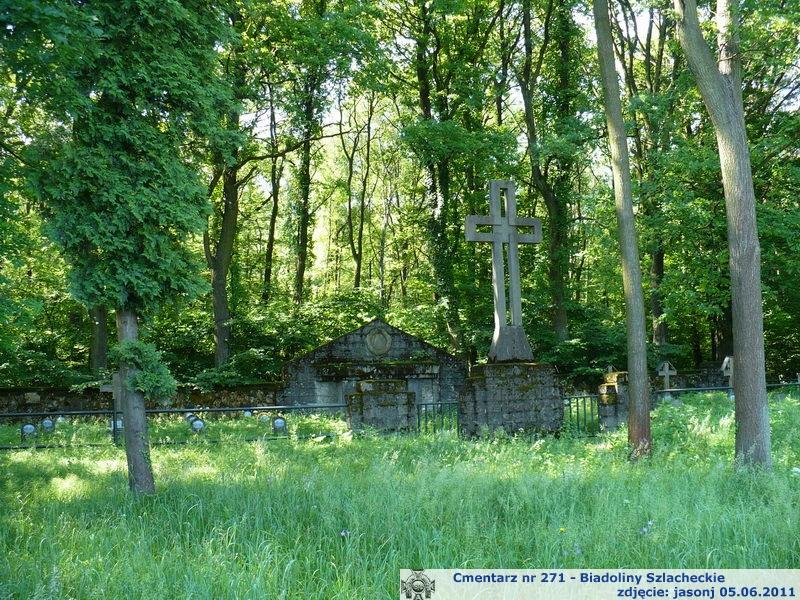 Cmentarz wojenny z I wojny nr 271 - Biadoliny Szlacheckie