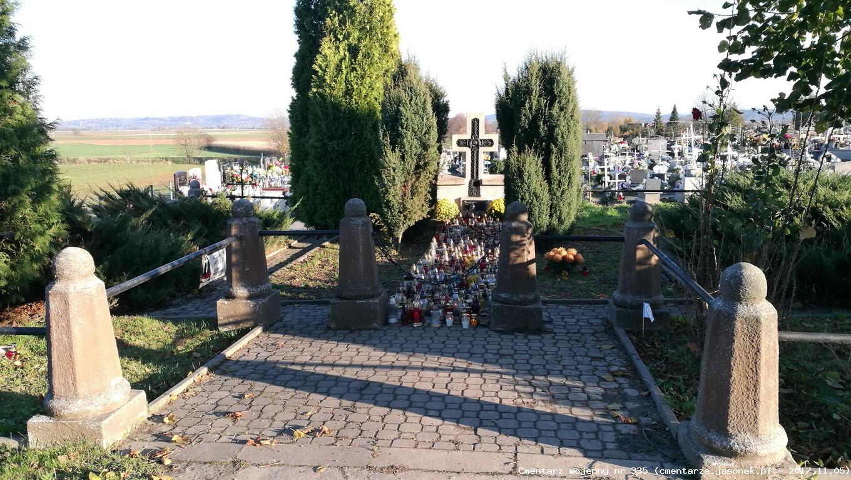 Cmentarz wojenny z I wojny nr 335 - Niegowić (cm. parafialny)