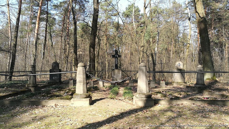 Cmentarz wojenny z I wojny nr 318 - Wrzępia